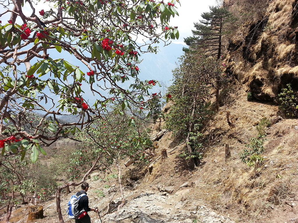 On the way to Lukla
